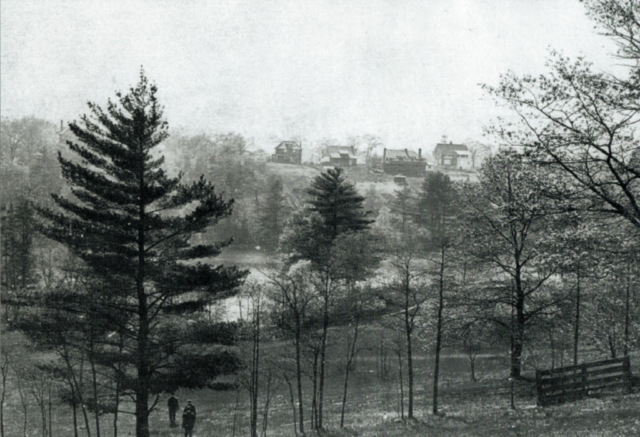 Looking west across the Grenadier Pond from High Park towards the backs of the homes on Ellis Avenue which can be seen on the horizon. In the foreground can be seen the fence between the Chapman and Howard properties which was the dividing line between Swansea and Toronto. Some of the posts are still there today. Source unknown.